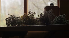 Dry herbs on the windowsill - stock footage