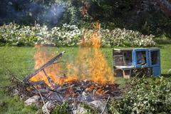 garbage in fire, garden illegal burn refuse. - stock photo