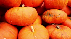 Big  pumpkins Stock Footage