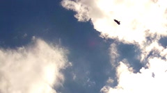 Hawk Flying In Wide Circle Against Partly Cloudy Sky Stock Footage