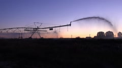 An irrigation sprinkler at daybreak Stock Footage