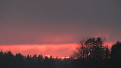 Beautiful red sunset over a Swedish forest Stock Footage