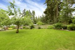 backyard landscape design - stock photo