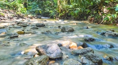 Water stream at tropical forest in pan right view 4K resolution Stock Footage