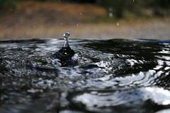 Water Droplet Stock Photos