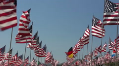 Waves Of Flags - stock footage