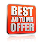 Best autumn offer banner Stock Illustration