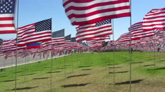 Waves Of Flags Stock Footage