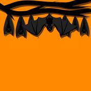 Hanging bats Piirros