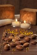 Seeds of argan with yellow cosmetic pearl Stock Photos