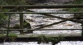 old wooden mossy bridge over wild river zoom out HD Footage