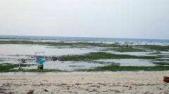 Girl meditating on beach Stock Footage