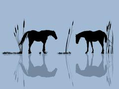 Horses at the water Stock Illustration