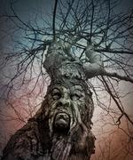 Old scary tree with angry face in woods Stock Illustration