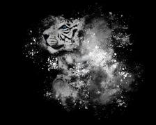 white bengal tiger with art paint on black - stock illustration