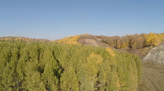 Aerial view. Flying over coniferous forest, hills, autumn landscape Stock Footage