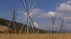 Teepee Poles at Big Hole National Battlefield - stock footage