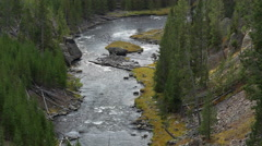 Gibbon River Below Gibbon Falls in Yellowstone National Park Stock Footage