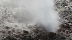 Geyser area park Stock Footage