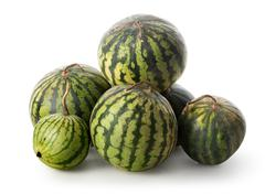 Heap of watermelons Stock Photos