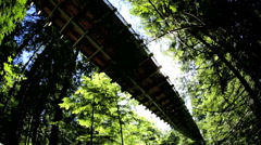 Elevated Capilano suspension footbridge walkway forest Treetops Vancouver Stock Footage