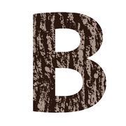 Stock Illustration of letter b made from oak bark