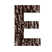 Stock Illustration of letter e made from oak bark