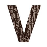 letter v made from oak bark - stock illustration