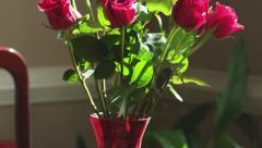 Roses by window Stock Footage