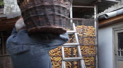 Old man carrying a basket with corn cobs, corn cribs, harvest, farm, farmer Stock Footage
