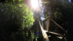Female walker Capilano suspended Treetop forest walkway Vancouver Stock Footage