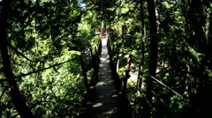 POV motion suspended Treetop footbridge canopy Capilano Vancouver Canada Stock Footage
