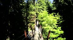 POV walk elevated pedestrian treetop walkway Capilano Eco Park Vancouver Canada - stock footage