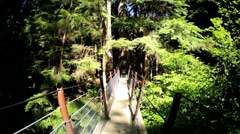 POV motion suspended Treetop footbridge canopy Capilano tourist Vancouver Stock Footage