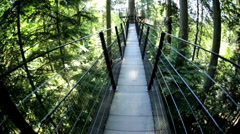 POV walking elevated pedestrian suspended Treetop walkway Capilano Vancouver Stock Footage