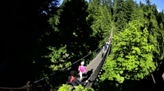 Elevated Capilano suspension footbridge tourist walkway Treetops Vancouver - stock footage
