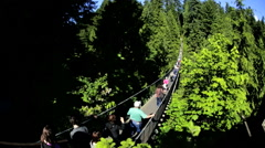 Elevated Capilano suspension footbridge people on walkway Treetops Canada - stock footage