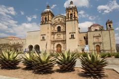 the santo domingo church in oaxaca city - stock photo