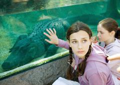 Teen girl touching glass aquarium containing alligator - stock photo