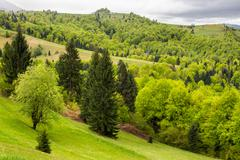 Village on hillside meadow with forest in mountain Stock Photos