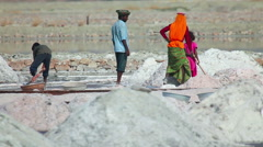 Indian people mining and hauling salt at a saline on lake in Sambhar Stock Footage