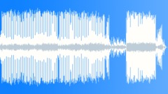 Quirky Acoustic Groove Stock Music