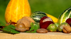 Ornamental pumpkins, walnuts and conkers as a decoration Stock Footage