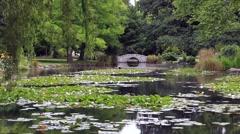 Queenstown Gardens in New Zealand, South Island Stock Footage