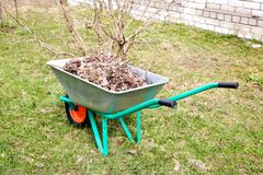hand cart filled with dry leaves in the spring - stock photo