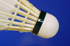 shuttlecocks with feathers for badminton . - stock photo