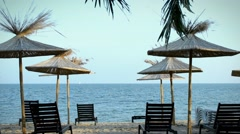 Beach with palm trees and chaise-longue Stock Footage