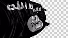Flag of Isis Stock Footage