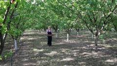 Female farmer working in apricot orchard Stock Footage
