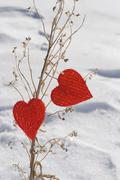 Heart shaped ornaments on dried plant stalk Stock Photos